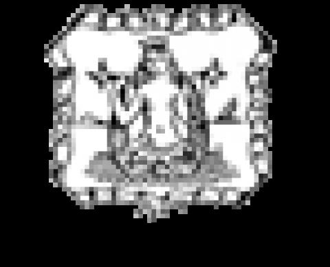 Quel senso di Bibliopolis per la filosofia…. Il Denaro 9/03/2013
